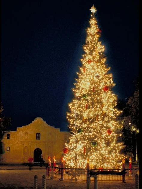 san antonio texas the christmas tree at alamo plaza