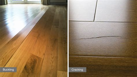 hardwood floors buckling humidity 6 ways humidity can affect your hardwood floor lauzon