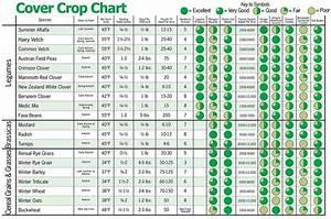 Cover Crop Chart Soil Water Conservation Pinterest