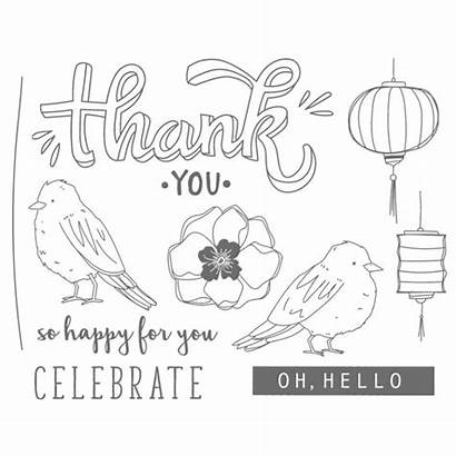 Stampin Happy Stamp Blends Colour Class Stampahowlics