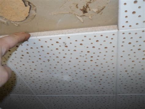 Do Acoustic Ceilings Contain Asbestos by Images Of Asbestos Ceiling Tiles Asbestos Pinterest