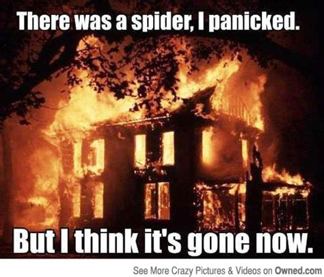 Kill Spider Meme - apologetic sermon illustration 24 trying to kill a spider by burning down the house and how