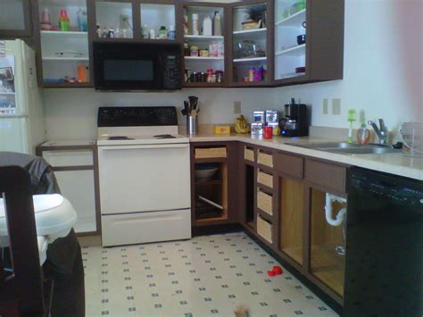 do you paint the inside of kitchen cabinets cabinets 9952