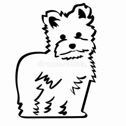 Maltese Dog Crafteroks Mano Env Vettore Illustrazione