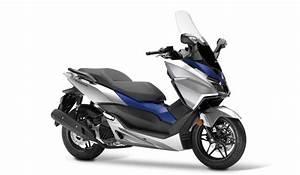 Honda Forza 125 2018 : 2017 honda forza 125 ~ Melissatoandfro.com Idées de Décoration