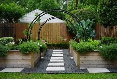 Modern Kitchen Garden Gardenista Texas Key West