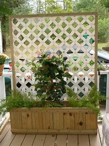 Privacy screen ideas for your outdoor area the owner for Simple and easy backyard privacy ideas
