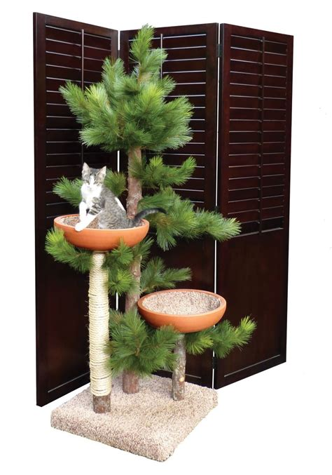 catsplay cat furniture the cat furniture products and