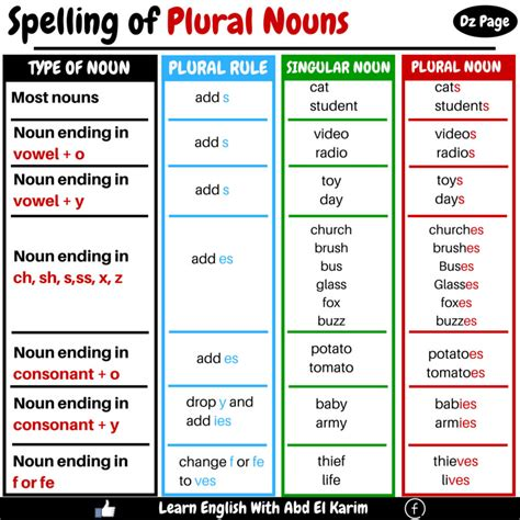 spelling  plural nouns vocabulary home