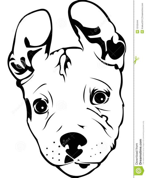 pit clipart black and white pit bull puppy stock vector illustration of animals