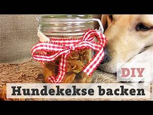 Hundekekse Selbst Backen : hundekekse backen thunfisch leckerli f r hund katze selber backen diy youtube ~ Watch28wear.com Haus und Dekorationen