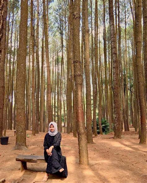 hutan pinus mangunan spot foto terbaik  jogja rafira
