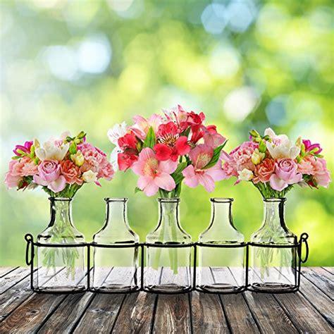small bud glass vases  black metal rack stand window