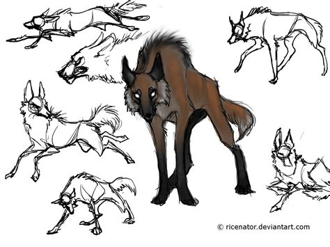 maned wolf size comparison google search art