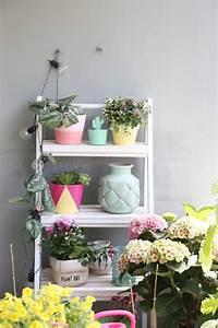 Magnolie Im Topf : magnolie balkon cheap pin it with magnolie balkon ~ Lizthompson.info Haus und Dekorationen