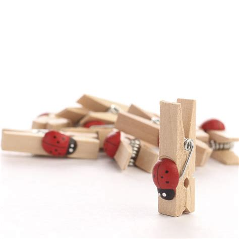 small ladybug embellished wooden clothespins clothespins