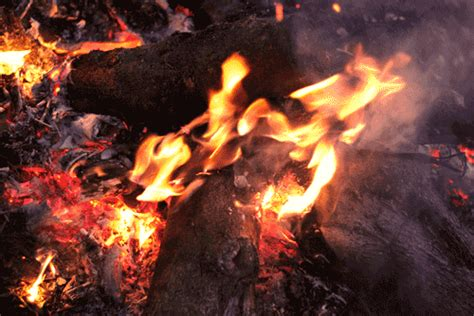 Burning Fire Pictures, Photos, and Images for Facebook ...