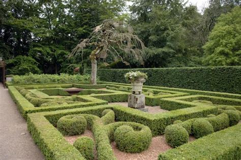 Buchsbaum Garten