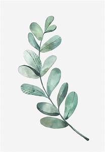 Best 25+ Watercolor leaves ideas only on Pinterest | Leaf ...