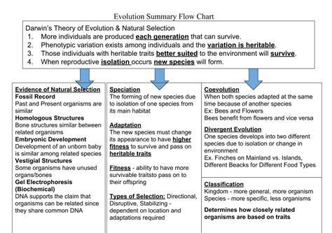 trends  darwins theory  evolution flow chart