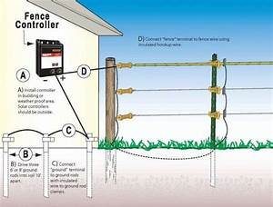 15  Home Electric Fence Wiring Diagram