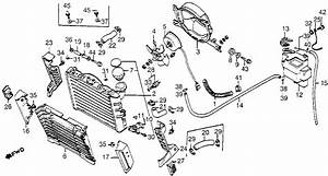 2002 Ford Taurus Radiator Hose Diagram