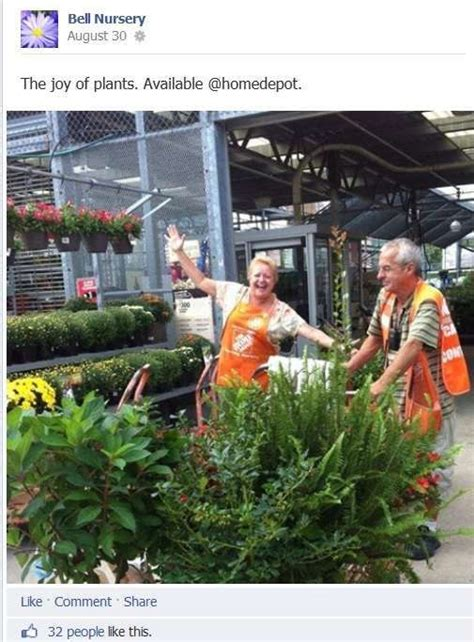 grow ls home depot bell nursery pulls consumers to the home depot with social