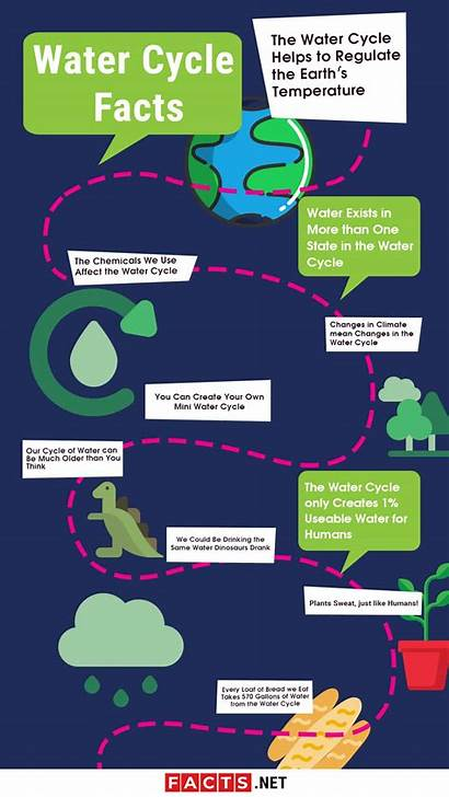 Cycle Facts Water Science Nature Experiments