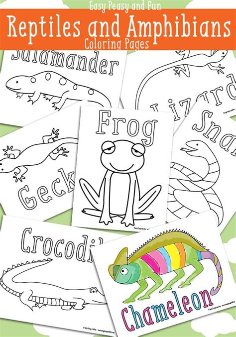 reptile coloring pages free printable easy peasy and