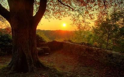 Sunset Autumn Random Fanpop