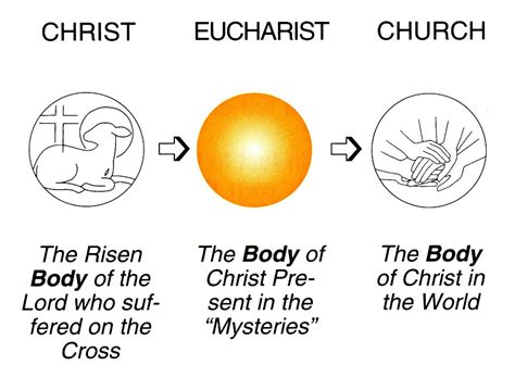 Chapter 1 How The Eucharist Evolved  Eucharist The. Stroke Association Signs. Location Signs. Hess Signs Of Stroke. Foot Fungus Bottom Signs Of Stroke. 24 Star Signs Of Stroke. Graduation Signs Of Stroke. Project Makaton Signs. Subtlety Signs