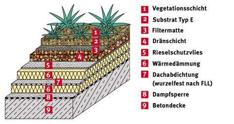 Dachbegruenung Oase Im Asphalt Dschungel by Dachbegrunung Aufbau