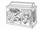 Coloring Aquarium Fish Acquario Colorare Kolorowanki Tank Akwarium Bestcoloringpagesforkids Disegni Dzieci Dla Piccolo Pets Saltwater sketch template
