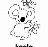 Koala Cartoon Cute Coloring Drawing Line Pages Template Baby Little Getdrawings Sketch Print Clipartmag sketch template