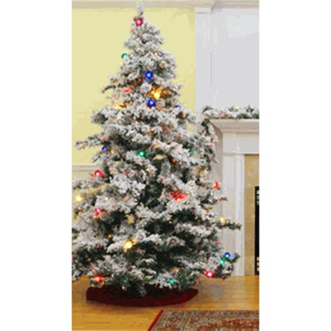 vickerman prelit flocked alaskan tree with multicolor lights