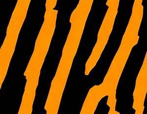 Tiger Stripe Background Clipart (16+)