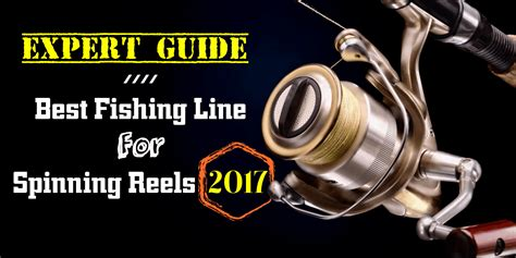 expert guide  fishing   spinning reels