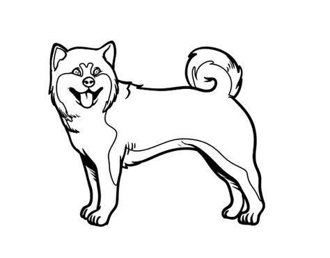 shiba inu coloring pages  getcoloringscom  printable colorings pages  print  color