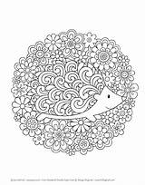Doodles Notebook Coloring Mandala Super Hedgehog Volinski Mandalas Adult Activity Jess Sheets Printable Doodle Sheet Adorable Animal Animals Colouring Erwachsene sketch template