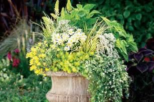container ideas perennials in pots gardening birds