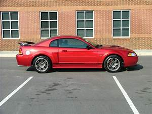 17x9 03 cobra rims - The Mustang Source - Ford Mustang Forums
