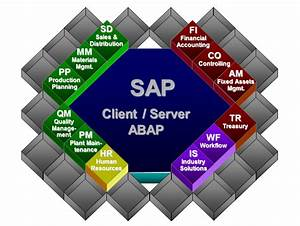 How Does Sap Work