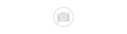 Ui Web Designing Development Digital Ux Banner