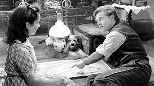 The getTV Mickey Rooney Blogathon – The Unexpected Ascend ...