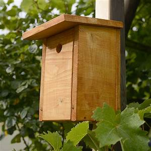 Vogelhaus Bauen Mit Kindern : nistkasten bauen ~ Lizthompson.info Haus und Dekorationen