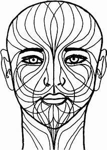 Facial Lichen Striatus