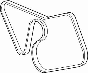 Ford Mustang Serpentine Belt  4 6 Liter  W  O Cobra  Water