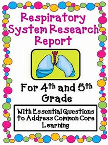 Respiratory System Research Report By - Uk Teaching Resources