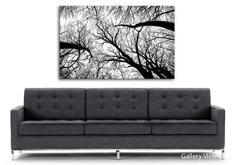 Pecan Grove Black And White Forest Canvas Stretched Canvas