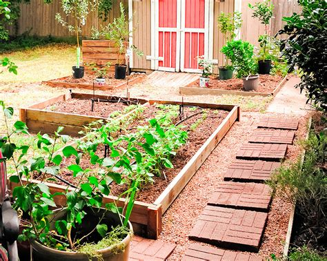 Vegetable And Flower Container Gardening Ideas
